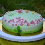 Le printemps en pâte à sucre !